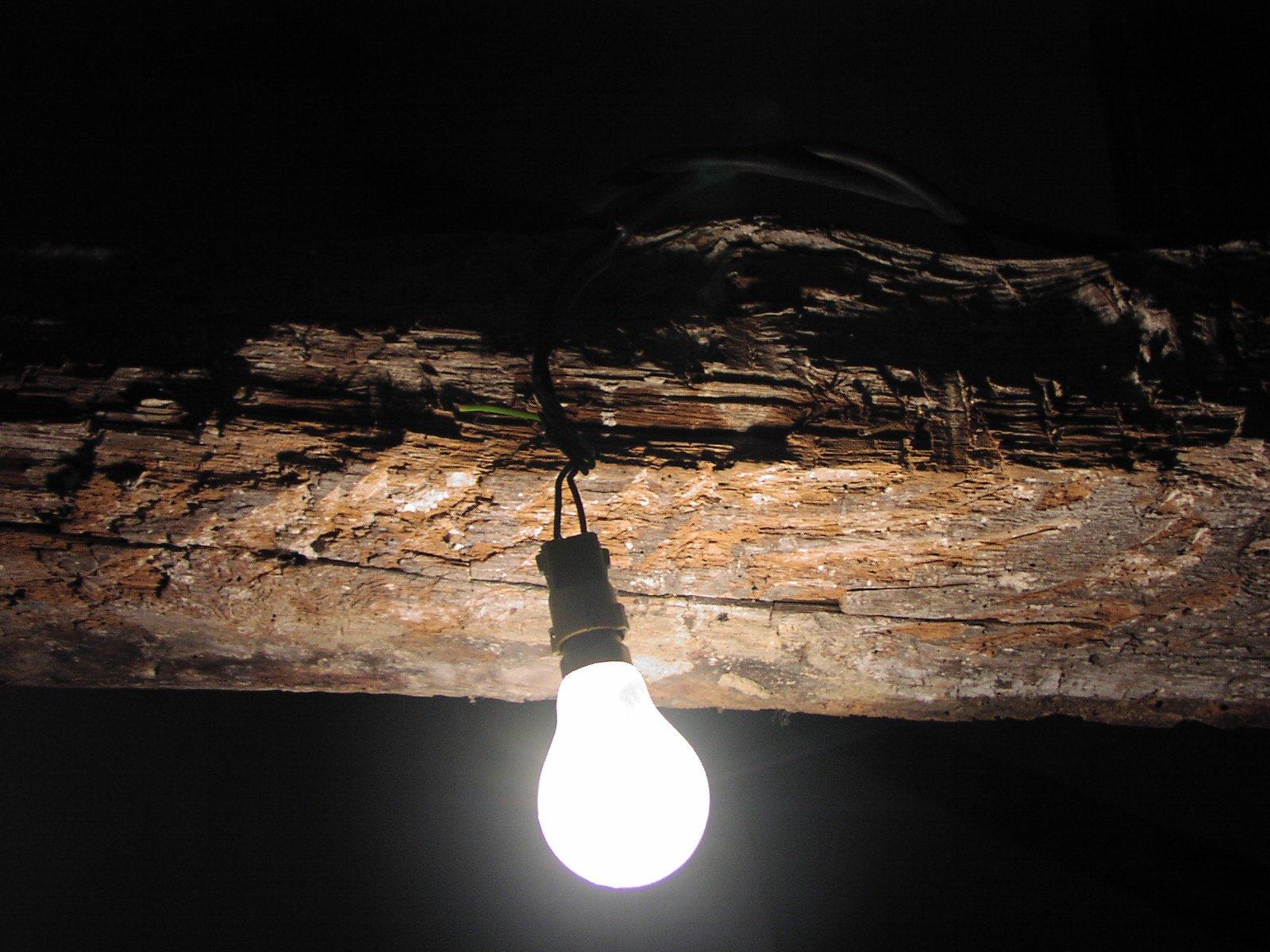 žiarovka, drevo