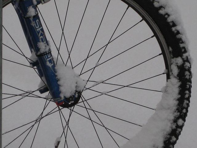 kolo v zimě
